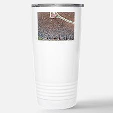Purkinje cells, light micrograp Travel Mug