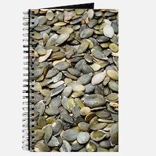 Pumpkin seeds Journal