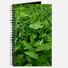 Woodland plants, Estonia Journal