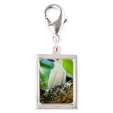 White tern Silver Portrait Charm
