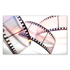 Photographic film Decal