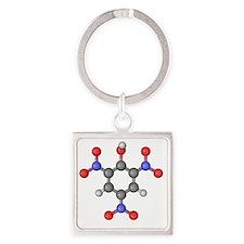 Picric acid explosive molecule Square Keychain