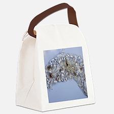 Water bear, light micrograph Canvas Lunch Bag