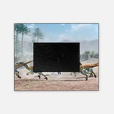 Velociraptor dinosaurs Picture Frame