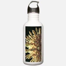 Virus particle, artwor Water Bottle