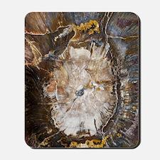 Petrified wood Mousepad