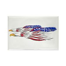 US Flag: American Eagles Rectangle Magnet
