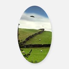 UFO sighting Oval Car Magnet