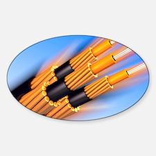 Optical fibre bundle for communicat Sticker (Oval)