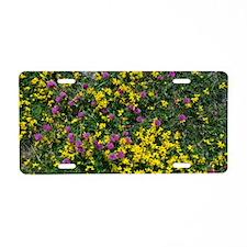 Trifolium pratense and Lotu Aluminum License Plate