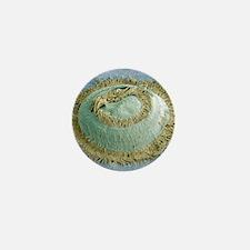 Trichodina parasite, SEM Mini Button