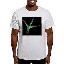 Thale cress leaf hair, micrograph T-Shirt