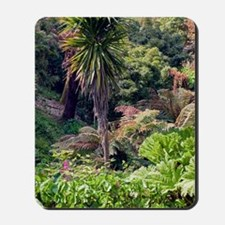 The Lost Gardens of Heligan, UK Mousepad
