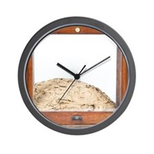 Termite nest Wall Clock