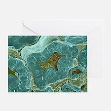 Nerve fibres, SEM Greeting Card