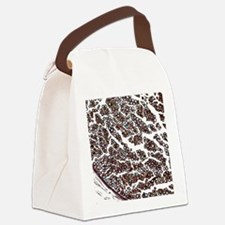 Nerve fibres, light micrograph Canvas Lunch Bag