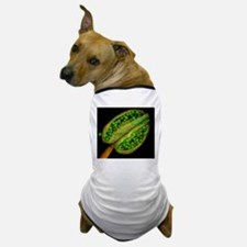 Thale cress anther and pollen, microgr Dog T-Shirt