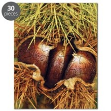 Sweet chestnuts Puzzle