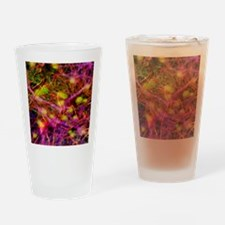 Nerve cells, computer artwork Drinking Glass