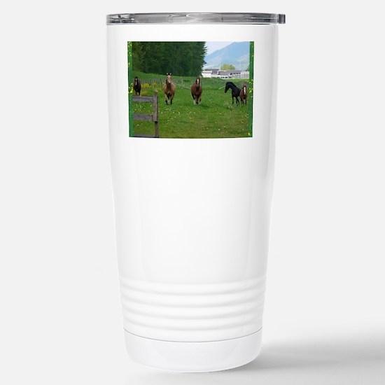 Circle f herd 10 x 8 Stainless Steel Travel Mug
