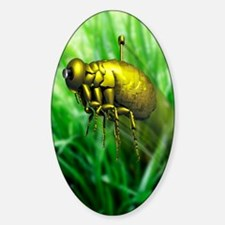 Nanodrone, artwork Sticker (Oval)