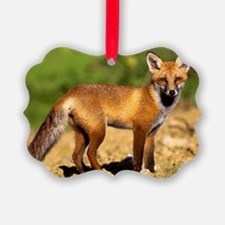 Young fox Ornament