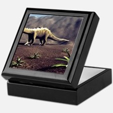 Young Diplodocus dinosaur Keepsake Box