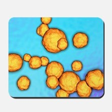 MRSA bacteria, artwork Mousepad
