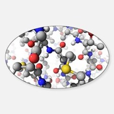 Molecular model, artwork Decal