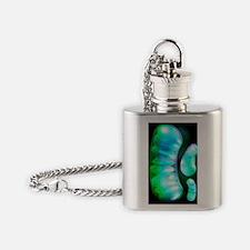 Mitochondria, artwork Flask Necklace
