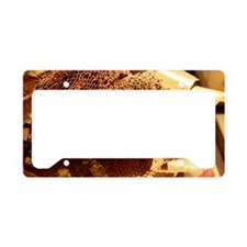 Spacecraft heatshield insulat License Plate Holder