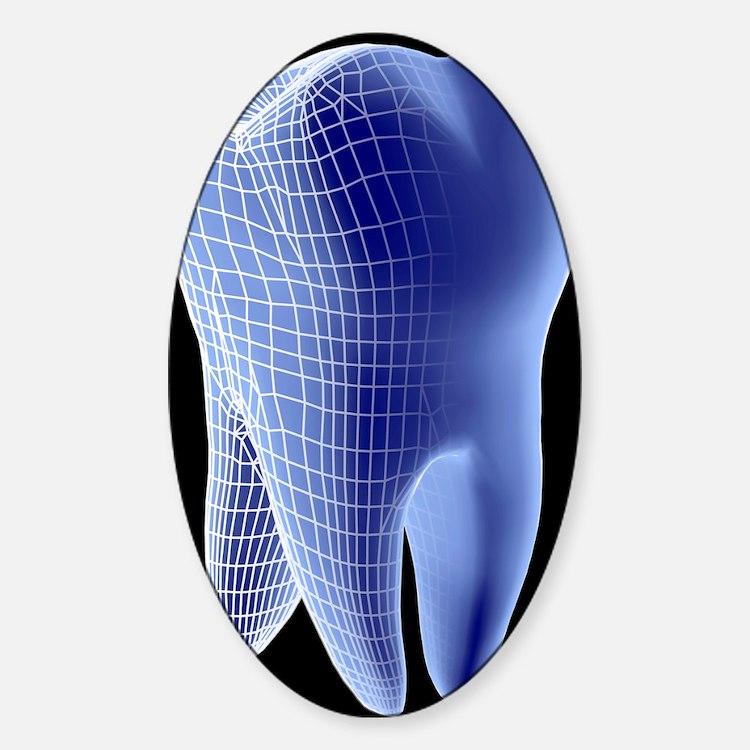 Molar tooth Sticker (Oval)