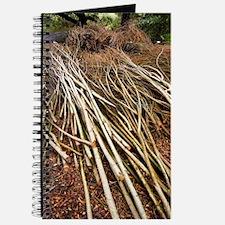 Willow sticks Journal