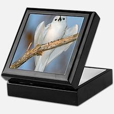White tern in a tree Keepsake Box