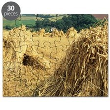 Wheat sheaves Puzzle