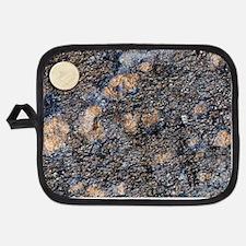 Wehrlite rock Potholder