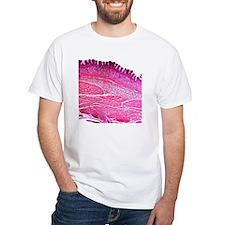 Small intestine section, light mi Shirt