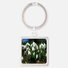 Snowdrops (Galanthus sp.) Square Keychain