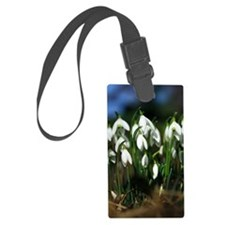 Snowdrops (Galanthus sp.) Luggage Tag