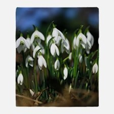 Snowdrops (Galanthus sp.) Throw Blanket