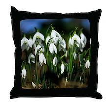 Snowdrops (Galanthus sp.) Throw Pillow