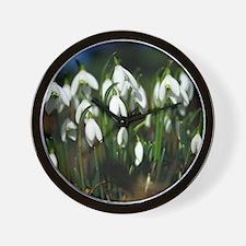 Snowdrops (Galanthus sp.) Wall Clock