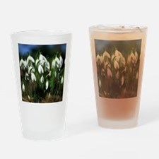 Snowdrops (Galanthus sp.) Drinking Glass