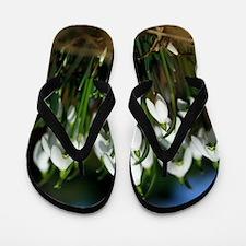 Snowdrops (Galanthus sp.) Flip Flops