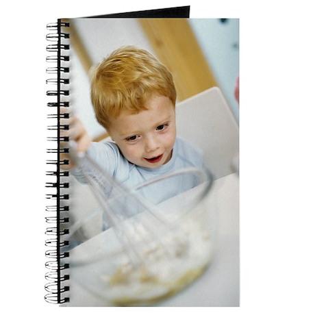 Making cakes Journal