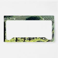 Vineyard License Plate Holder