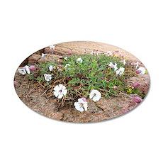 Silene uniflora flowers 35x21 Oval Wall Decal