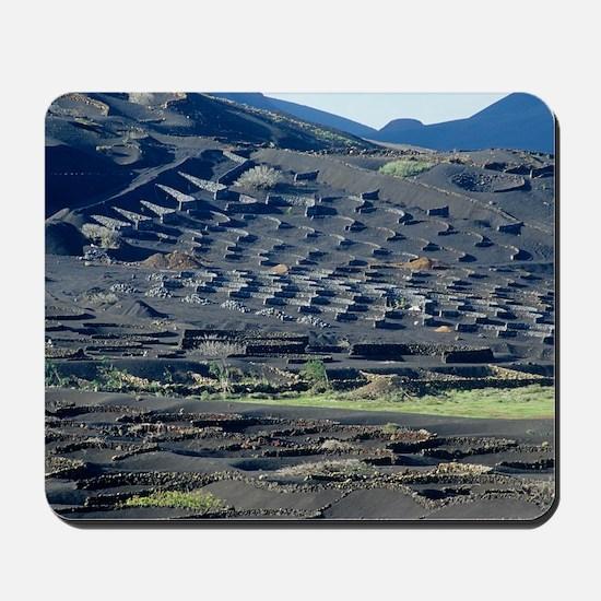 Vineyard in lava rock dugouts Mousepad