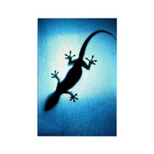 Silhouetted gecko Rectangle Magnet