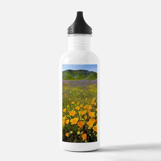 Shell Creek, Californi Water Bottle